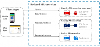 Securing .NET Microservices and Web Applications